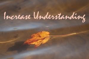 Iunderstanding3