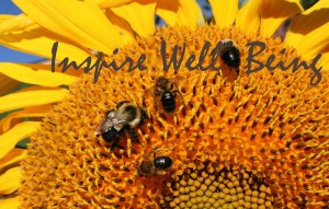 bees on sunflower inspire
